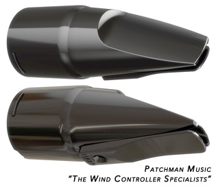 Roland Aerophone AE-10 mouthpiece reed replacement cap cover wind controller AE10 windsynth EWI at Patchman Music